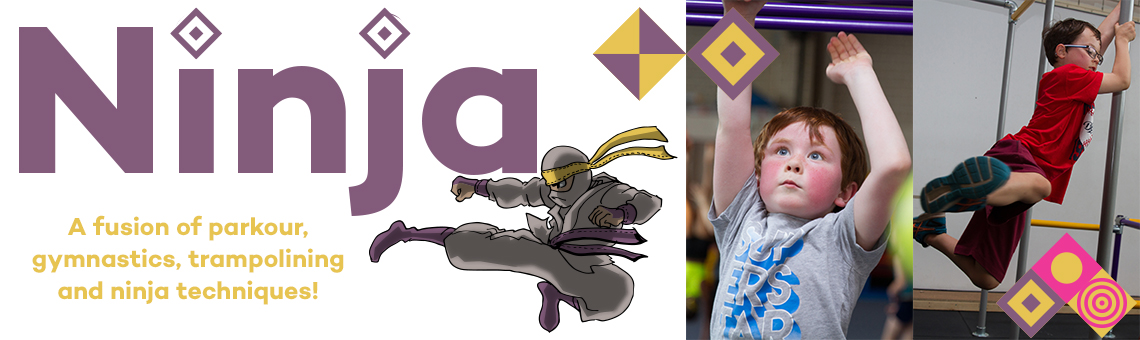 Ninja Slider Image